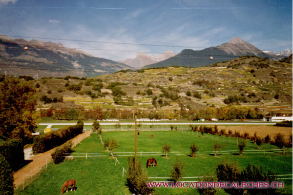 location-de-caleches-agriculture-paturage